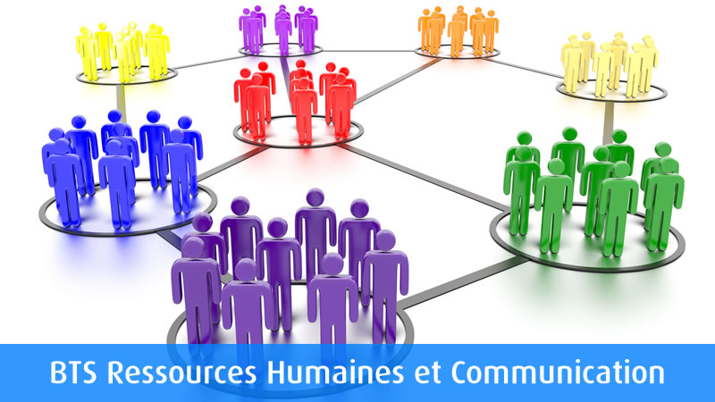 ressources-humaine